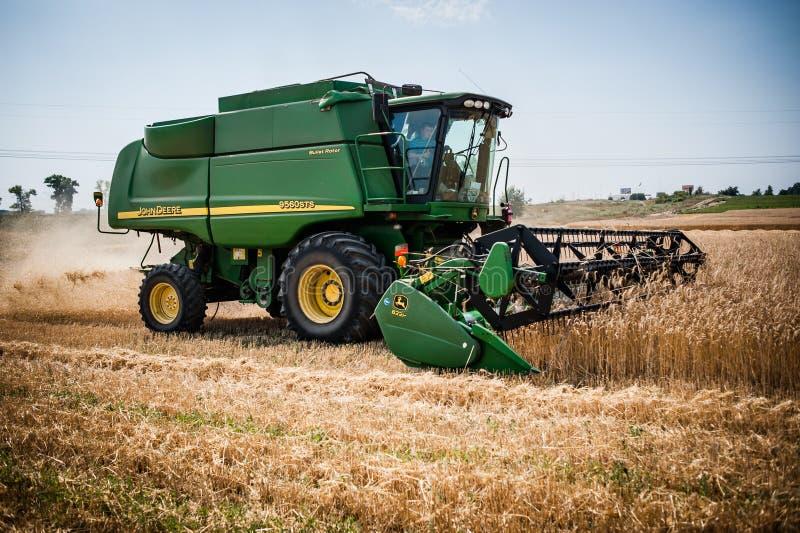 Raccolto del raccolto del grano fotografia stock