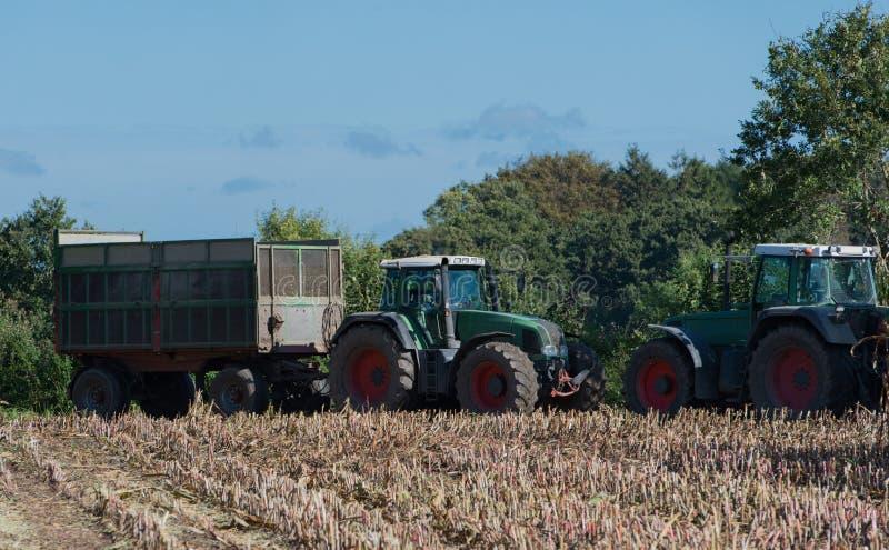 Raccolto di cereale, raccoglitrice di foraggio del cereale nell'azione, camion del raccolto con il trattore fotografia stock libera da diritti