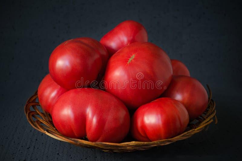 Raccolto di pomodori insolitamente grandi del ` s dell'agricoltore in un canestro su un bl immagine stock libera da diritti