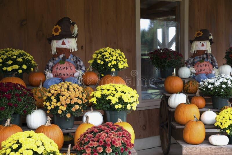 Raccolto felice con i fiori e le zucche orizzontali immagini stock