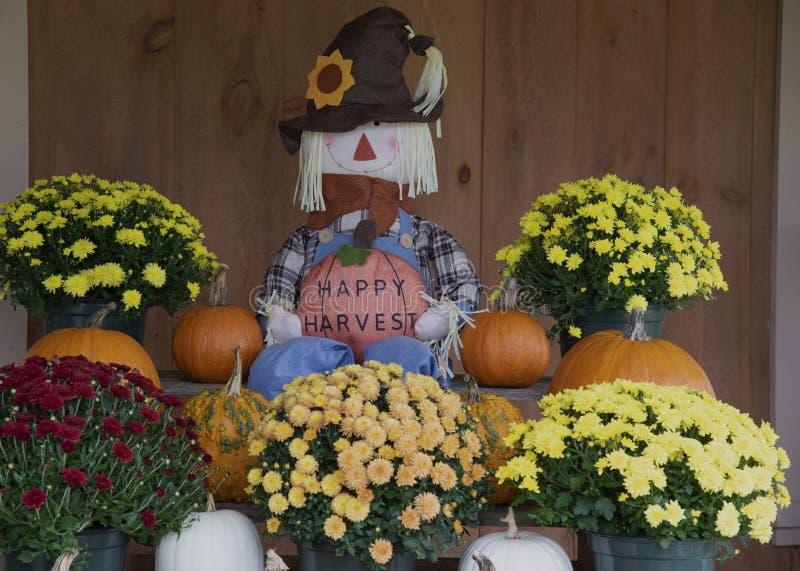 Raccolto felice con i fiori e le zucche orizzontali fotografia stock libera da diritti