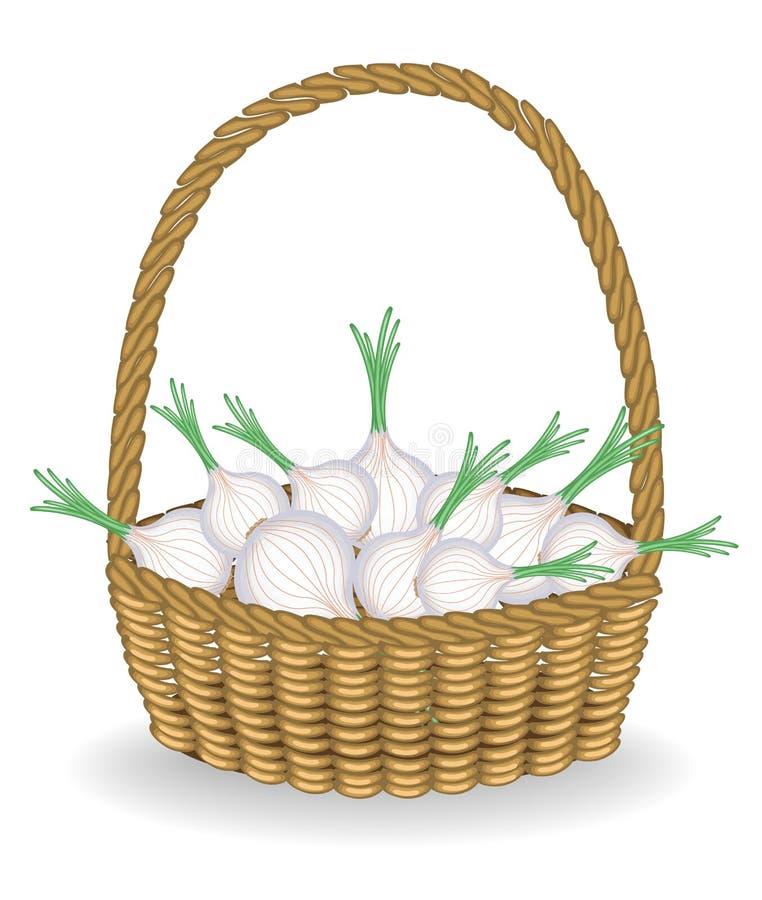 Raccolto generoso cipolle fresche nelle belle di un canestro di vimini Le verdure sono essenziali per la cottura e sane Illustraz illustrazione di stock