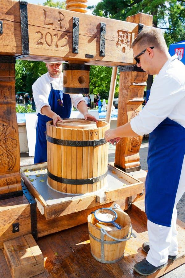 Raccolto moravian tradizionale del vino, giardini reali, castello di Praga, fotografia stock libera da diritti