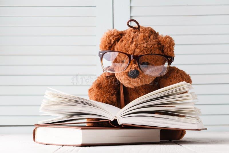 Racconto del bambino con l'orsacchiotto ed i libri immagini stock libere da diritti