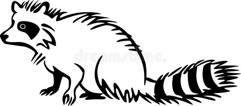 raccoon ilustracji