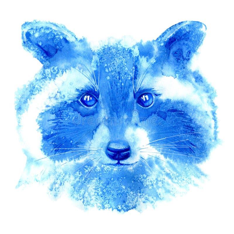 raccoon Dzikie zwierzę wizerunek ilustracji