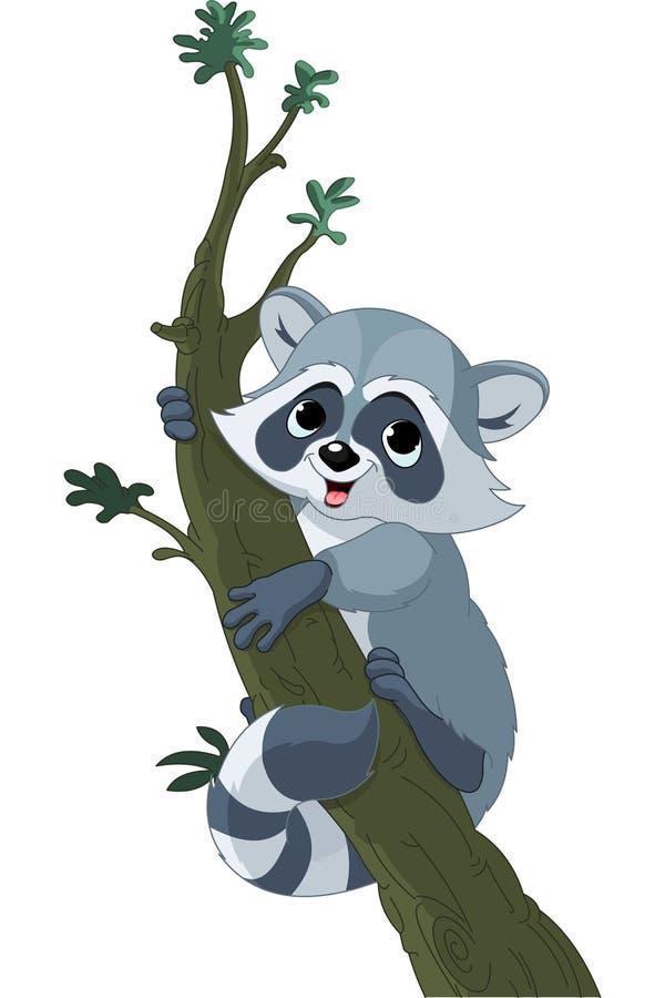 Raccoon engraçado dos desenhos animados na árvore ilustração do vetor