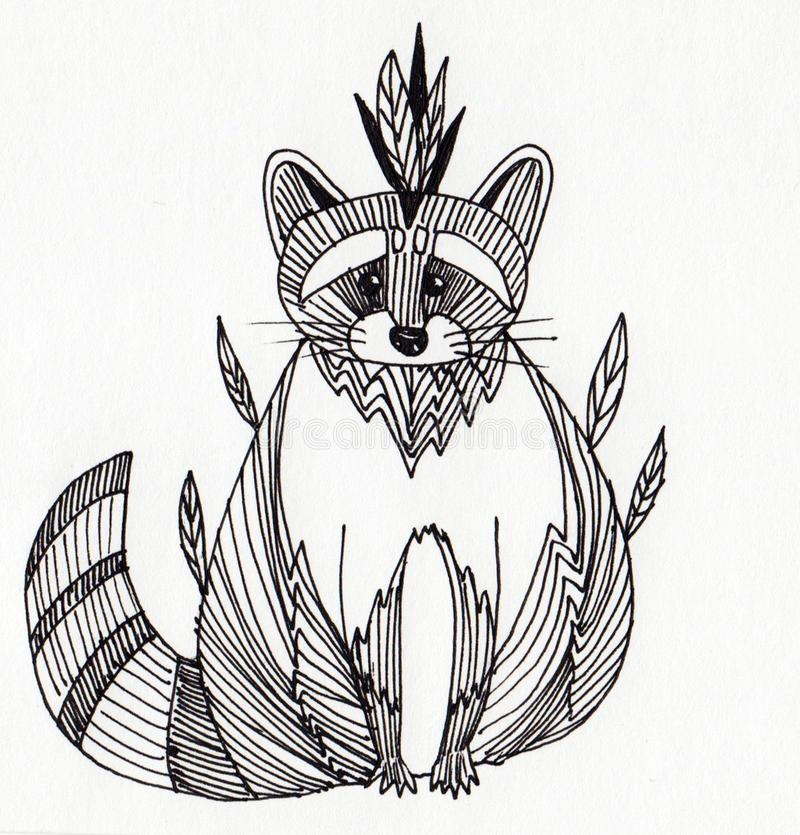 Raccoon with feathers on the head stock photo