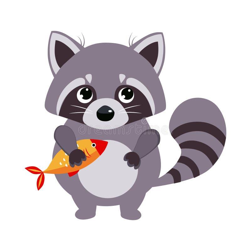 Raccoon. Funny Alphabet, Animal Vector Illustration. Raccoon. Funny Alphabet, Colourful Animal Vector Illustration royalty free illustration