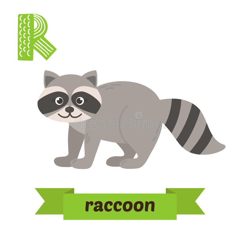 raccoon R list Ślicznych dzieci zwierzęcy abecadło w wektorze Funn ilustracji