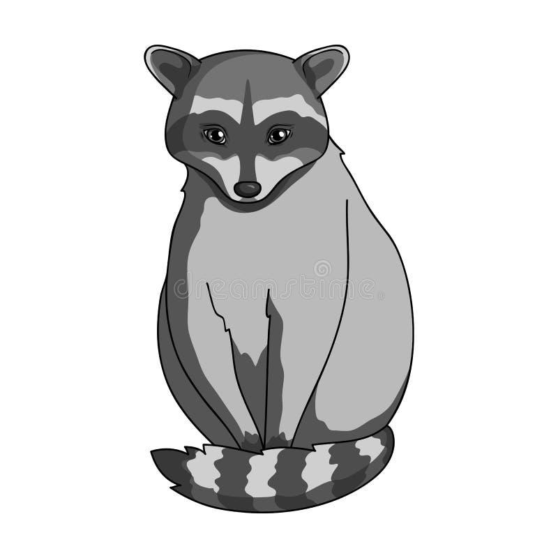 raccoon Zwierzęta przerzedżą ikonę w monochromu stylu symbolu zapasu ilustraci wektorowej sieci ilustracji