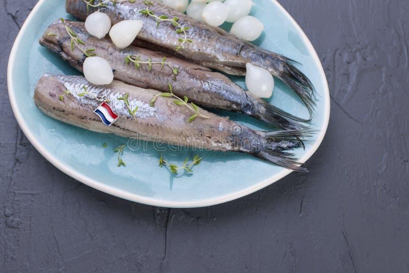 Raccordi di aringa con le cipolle su un piatto blu, una squisitezza olandese tradizionale Pasto delizioso dei frutti di mare Copi immagini stock