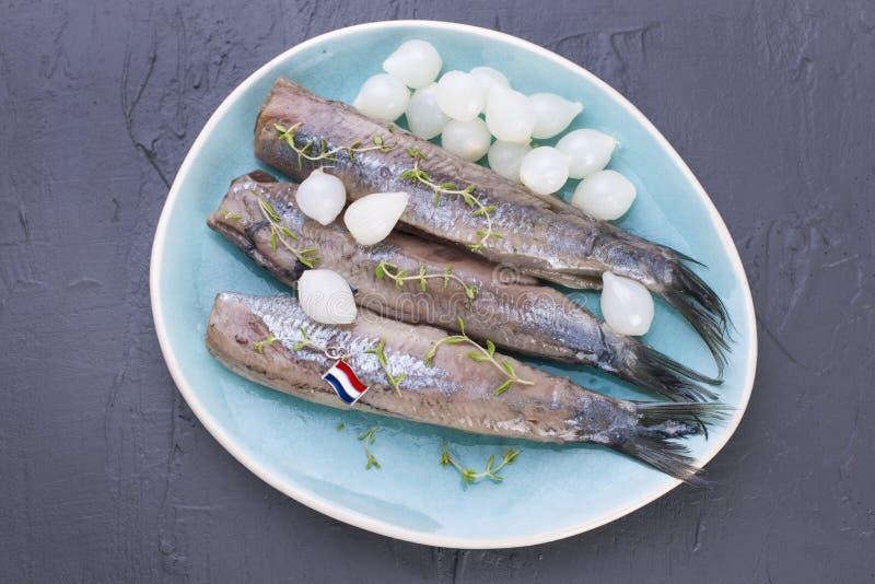Raccordi di aringa con le cipolle su un piatto blu, una squisitezza olandese tradizionale Pasto delizioso dei frutti di mare Copi immagine stock