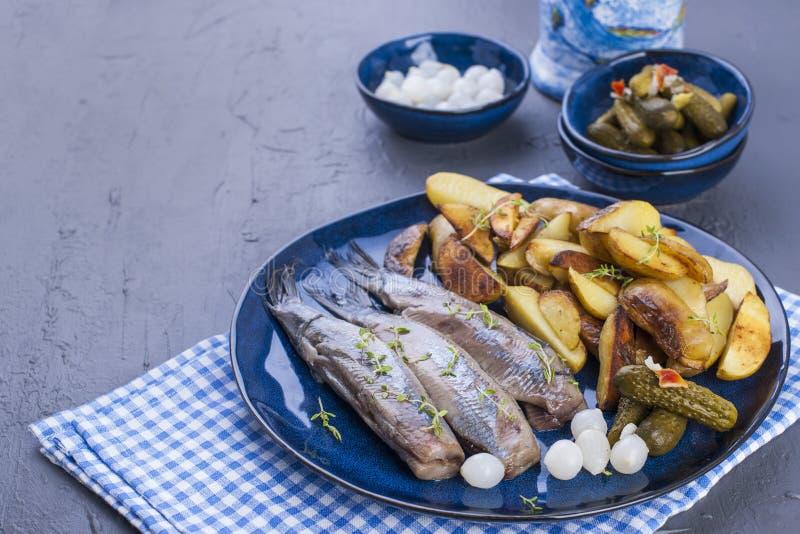 Raccordi di aringa su un piatto, al forno nelle patate e nei sottaceti del forno Alimento tradizionale delizioso dell'Olanda Squi fotografie stock