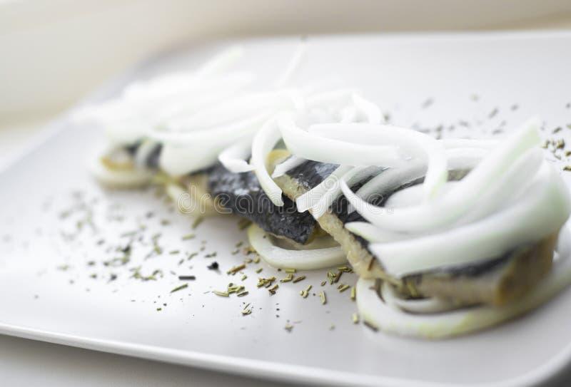 Raccordo dell'aringa sul piatto con gli anelli della cipolla fotografia stock