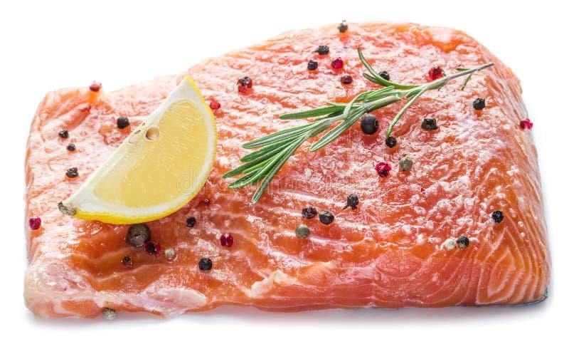 Raccordo di color salmone salato fotografia stock libera da diritti