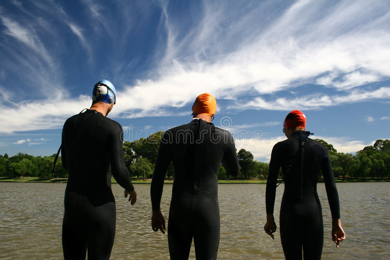 Download The Race stock photo. Image of swim, lake, competition - 381476