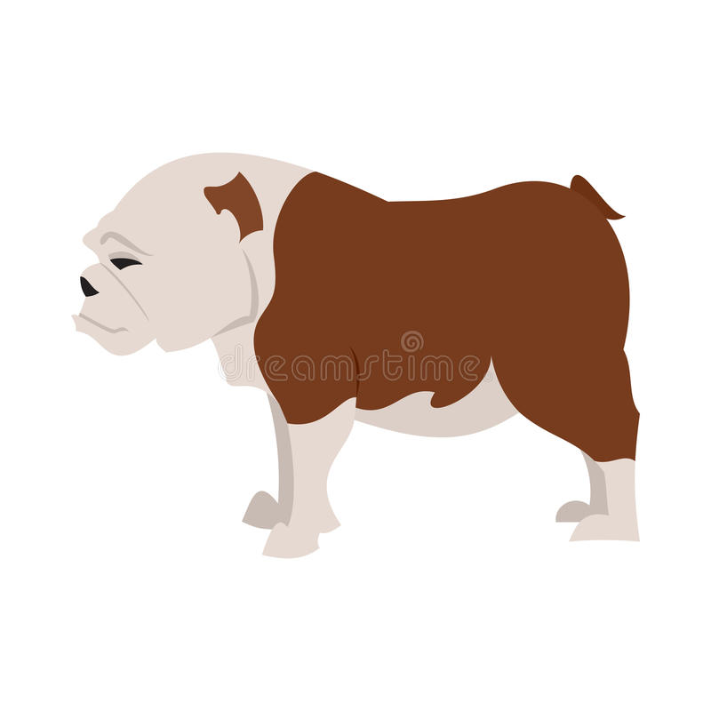 Race anglaise de bouledogue illustration de vecteur