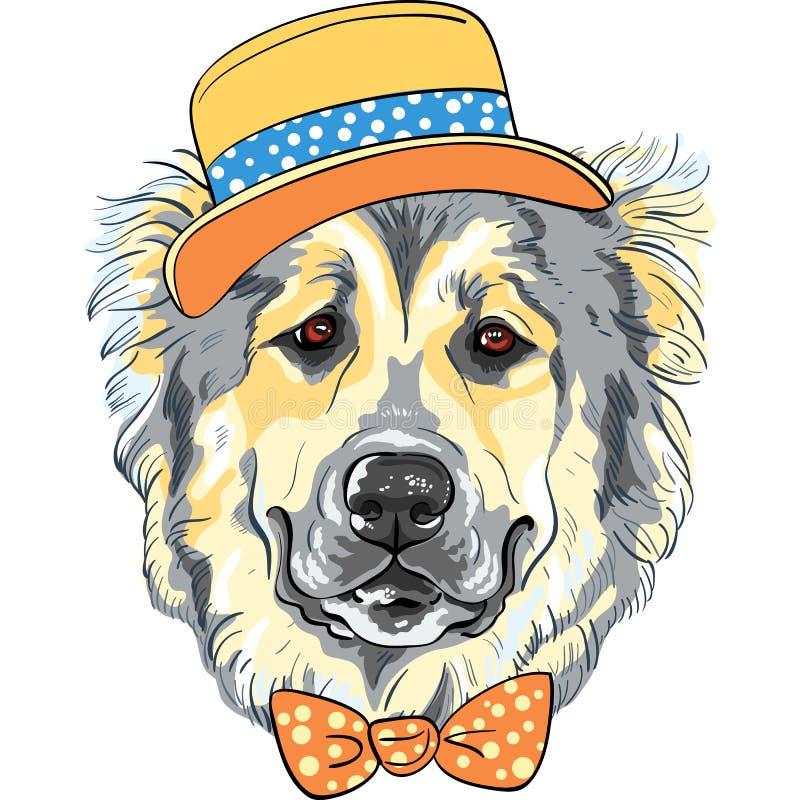 Race caucasienne de Dog de berger de chien de vecteur dans le chapeau et le noeud papillon illustration stock