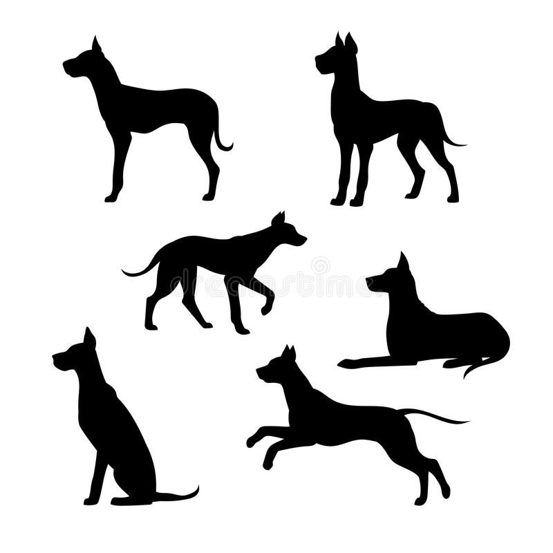 Race des silhouettes d'un vecteur de great dane de chien illustration de vecteur
