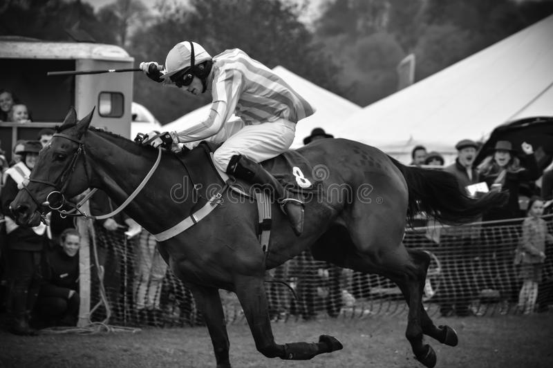 Race horse - cheering crowd. Point-to-Point racing is an amateur version of National Hunt racing or the Steeplechase. The name Point-to-Point refers to the