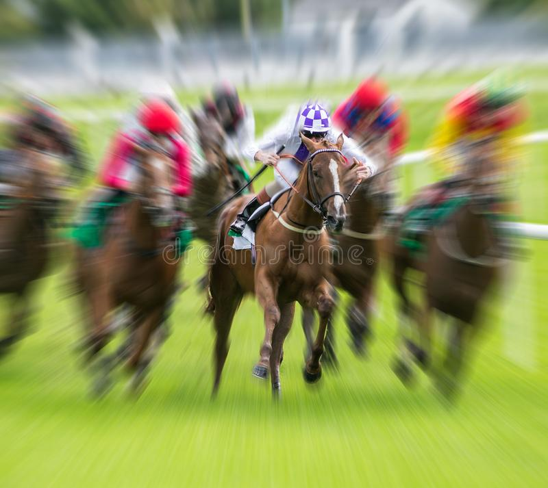 Race horse galloping motion blur royalty free stock photo