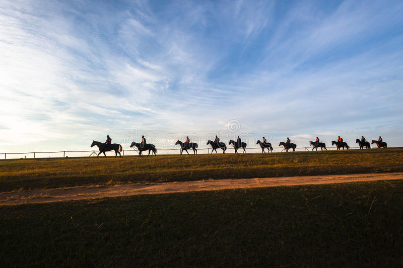 Race Horses Riders Landscape. Race horses riders morning track training silhouetted landscape royalty free stock photography