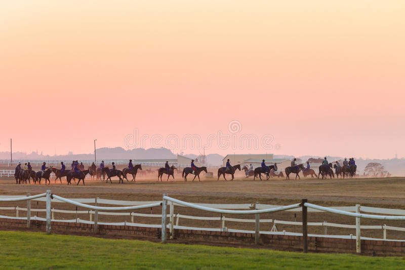 Download Race Horses Training Dawn Editorial Stock Photo - Image: 42169358