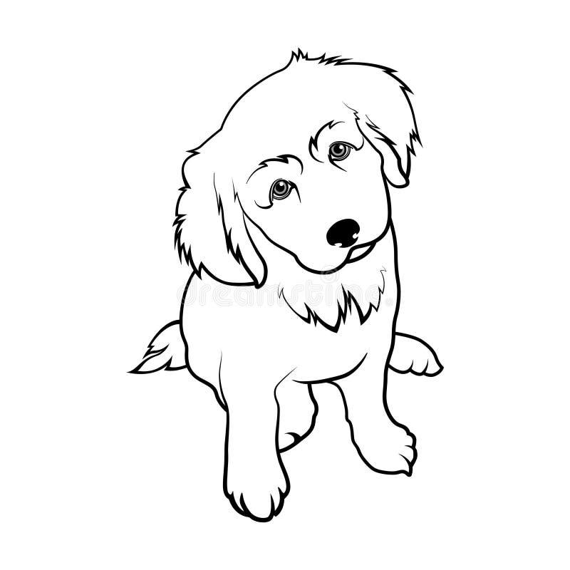 Race Labrador de chien Chiot Labrador illustration libre de droits