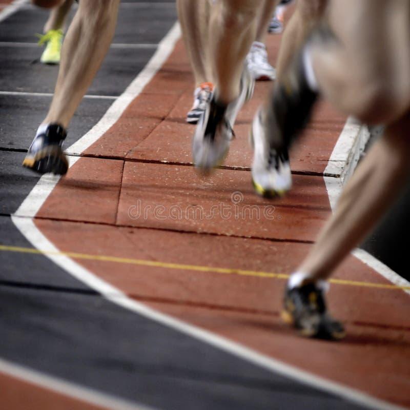race running royaltyfri foto