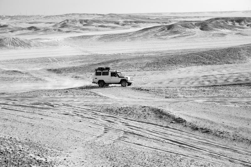 Race in sand desert. Car suv overcomes sand dunes obstacles. Competition racing challenge desert. Car drives offroad. With clouds of dust. Offroad vehicle stock photos