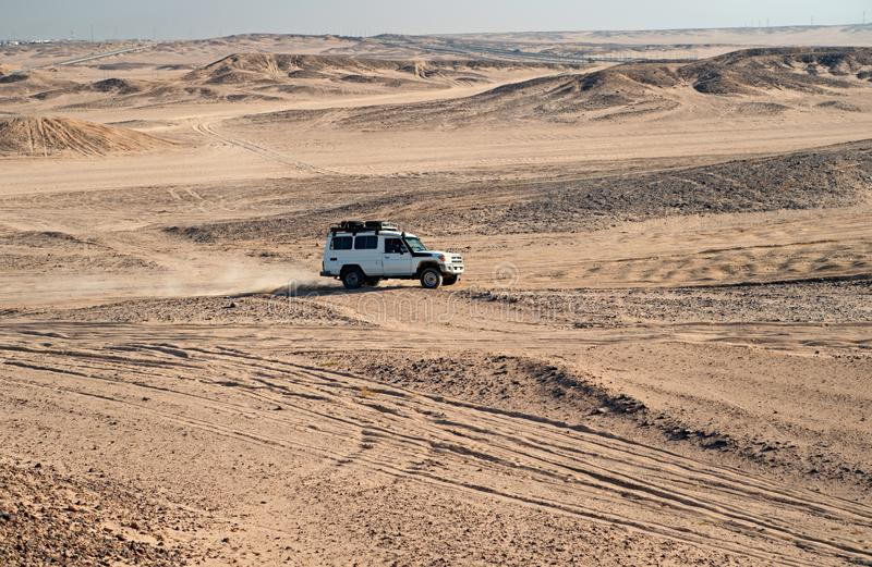 Race in sand desert. Car suv overcomes sand dunes obstacles. Competition racing challenge desert. Car drives offroad. With clouds of dust. Offroad vehicle royalty free stock images