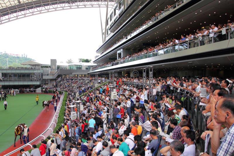 Racecourse de Hong Kong imagens de stock royalty free