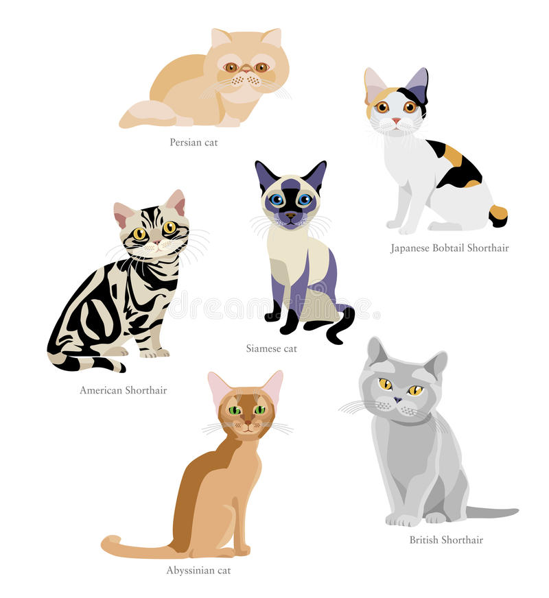 Races de chat illustration libre de droits