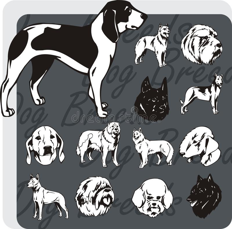 Races de chien - ensemble de vecteur illustration stock