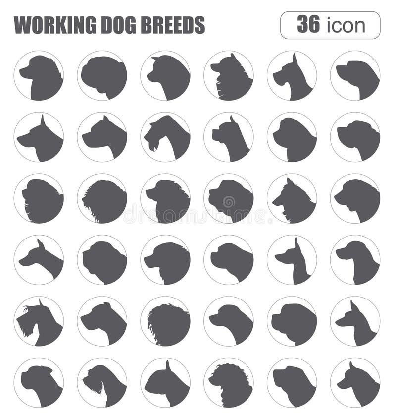 Races de chien fonctionnement illustration de vecteur