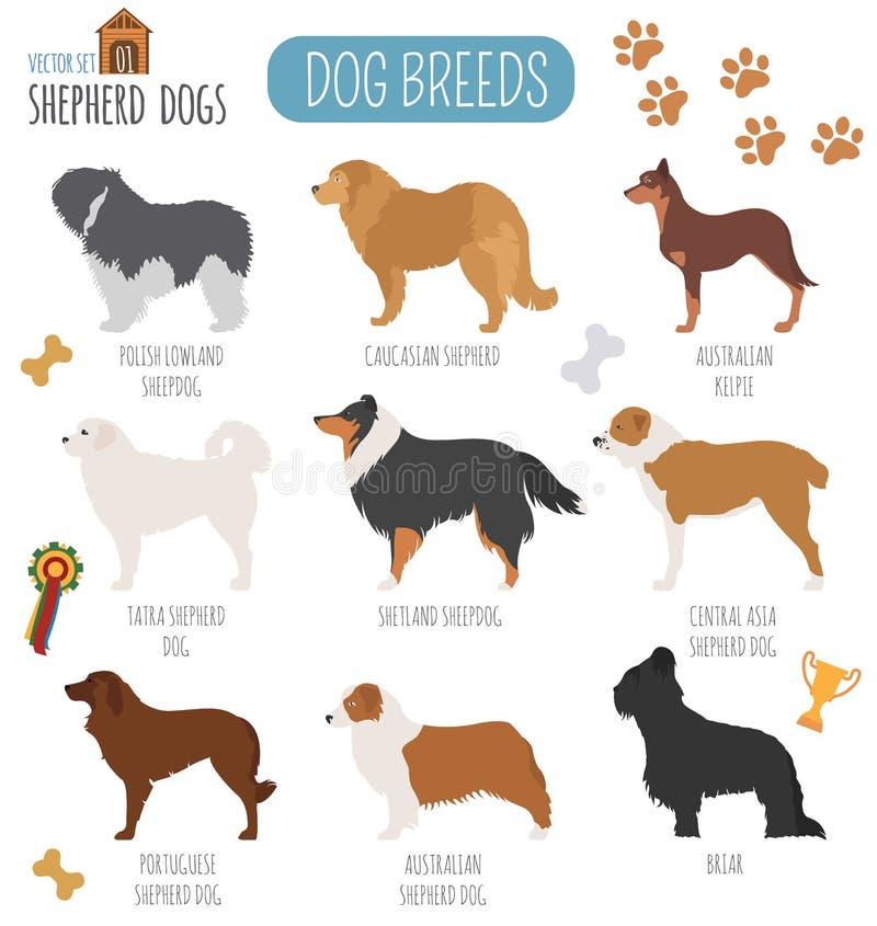 Races de chien Icône réglée de chien de berger Style plat illustration libre de droits