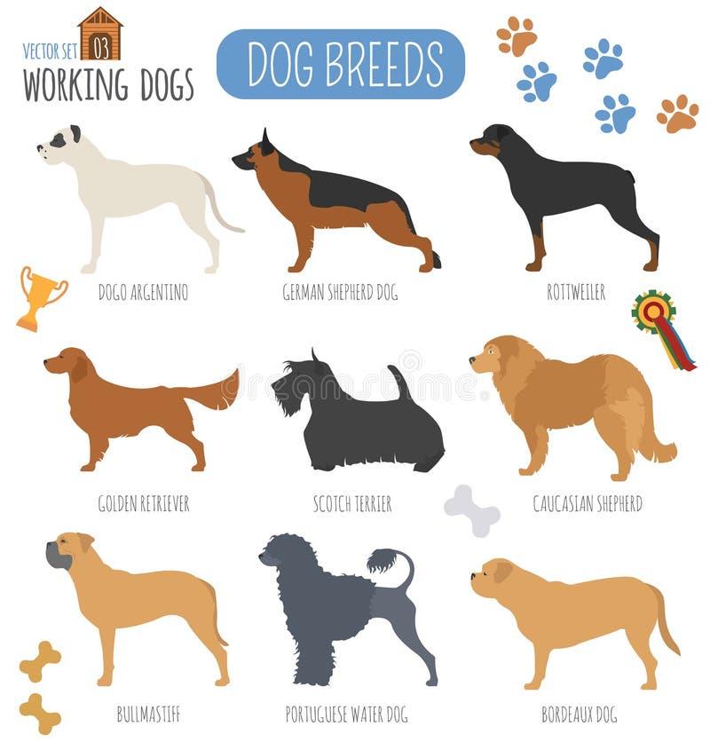 Races de chien Icône réglée (de observation) fonctionnante de chien Style plat illustration de vecteur