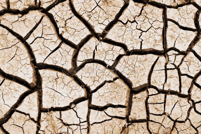 Rachado da terra da seca imagem de stock royalty free