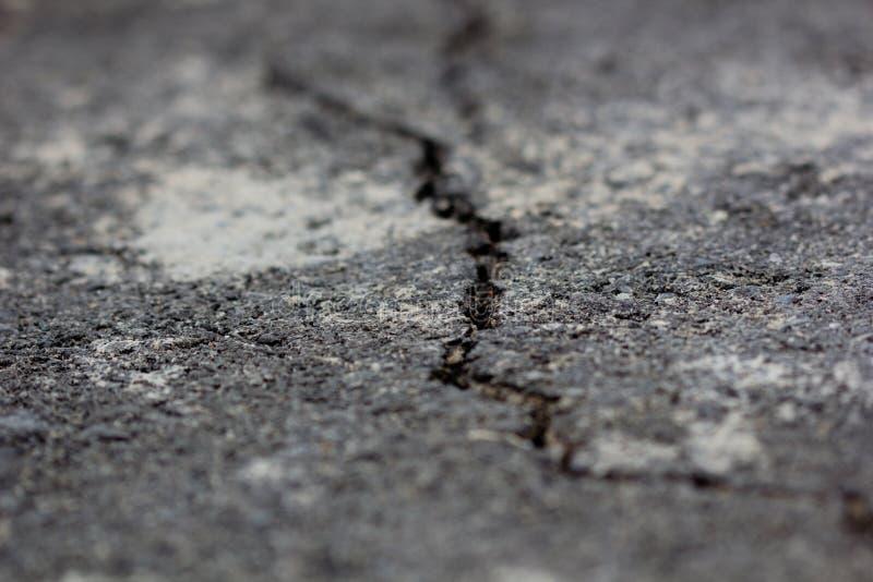 Rachadura no asfalto imagem de stock royalty free