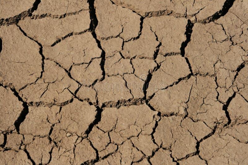 Rachaduras de secagem da lama imagem de stock