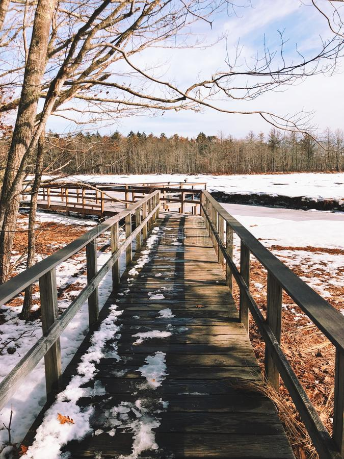 The Rachel Carson National Wildlife board path. The Rachel Carson National Wildlife Refuge wooden hiking board path in winter Cumberland County,York County royalty free stock images