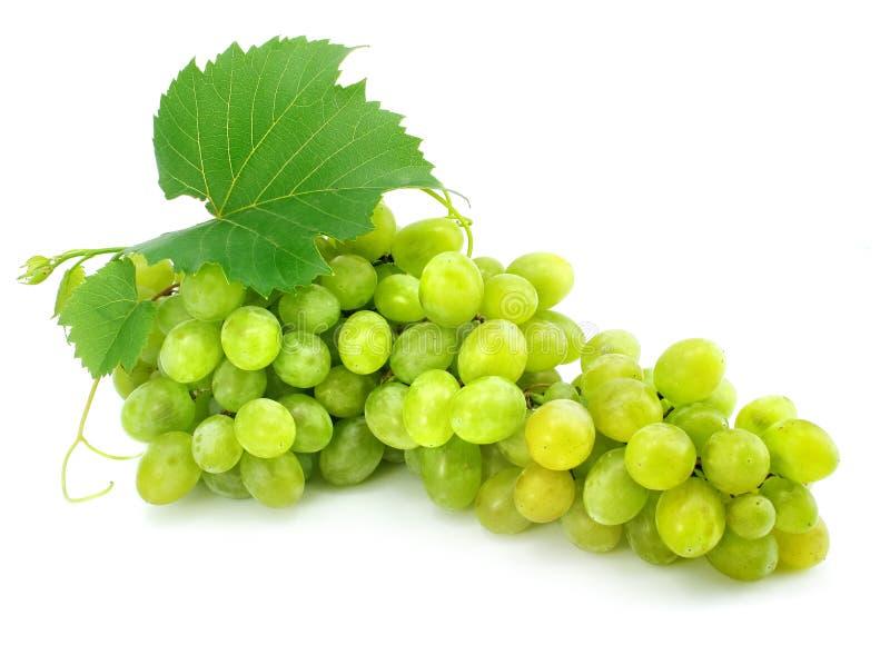 Racimo de uva verde aislado en blanco imagen de archivo