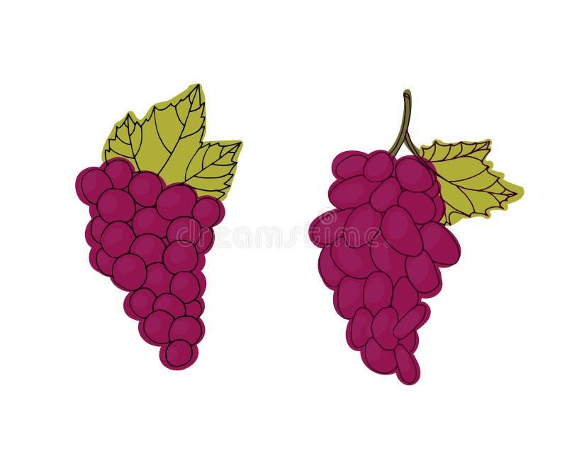 Racimo de uvas rojas stock de ilustración