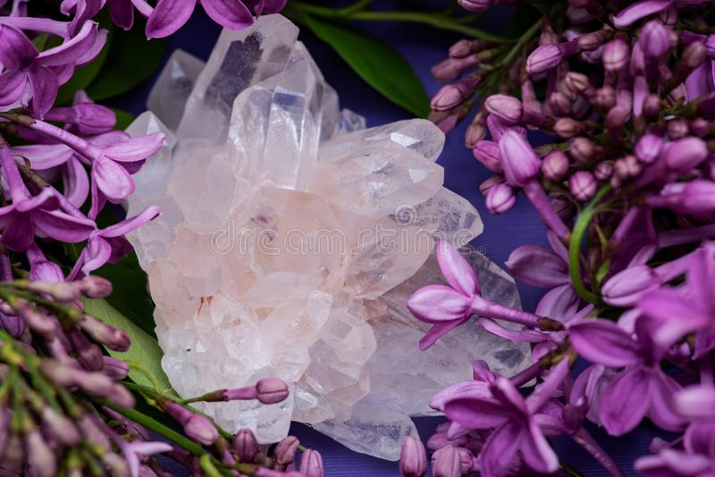 Racimos claros Himalayan del cuarzo con las inclusiones del hematites rodeadas por la flor p?rpura de la lila fotos de archivo libres de regalías