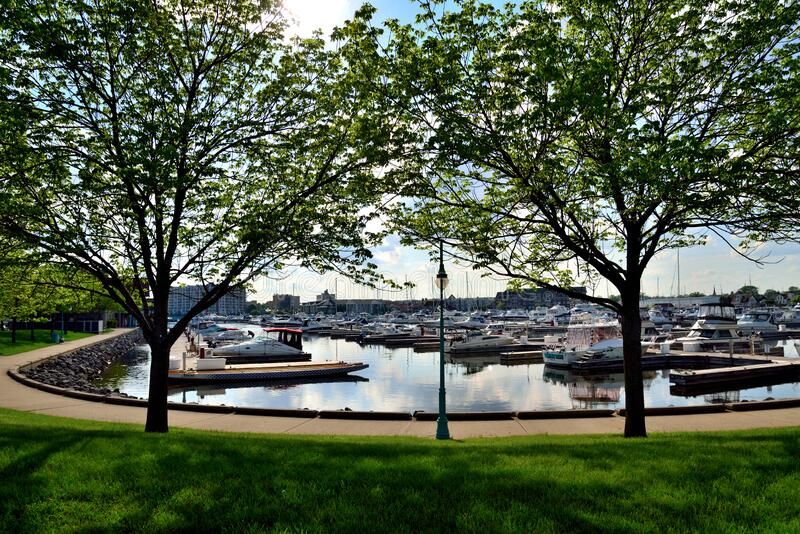 Spring foliage at Racine Harbor. Racine, Wisconsin / USA - May 31, 2018:  The Racine Harbor and skyline behind trees and into the sunlight in springtime royalty free stock photos