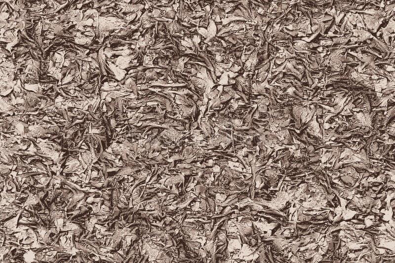 Racines, branches et feuilles au sol en automne illustration libre de droits