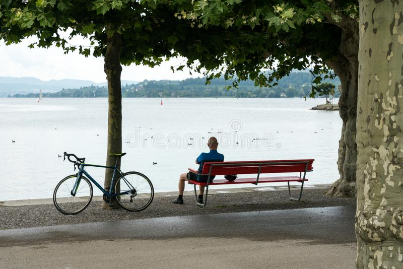 Racing bike leaning against a tree while man cyclist takes a break and enjoys the lake view royalty free stock photos