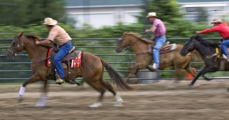 Racing Cowboys at Rodeo Panning and Motion Blur. Three cowboys race to cut off wayward calf at rodeo event - panning and motion blur stock images