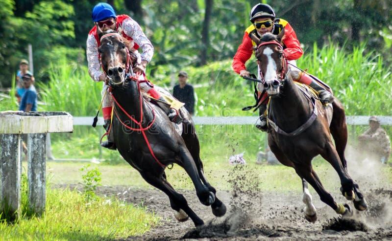 Racing 2 horse royalty free stock photo